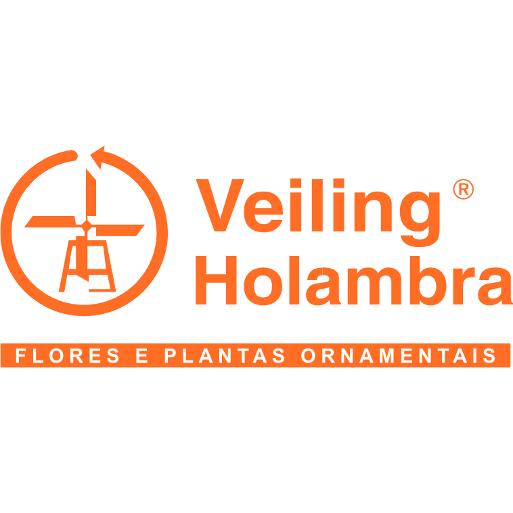 Logo Veiling Holambra