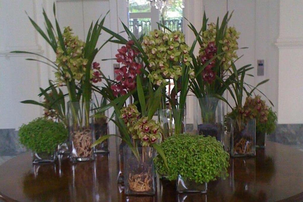 Assinaturas de flores para residencias