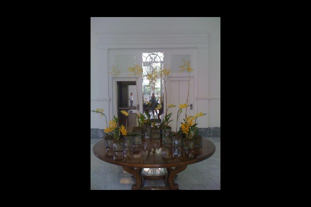 Assinaturas de flores: permanente renovação de espaços