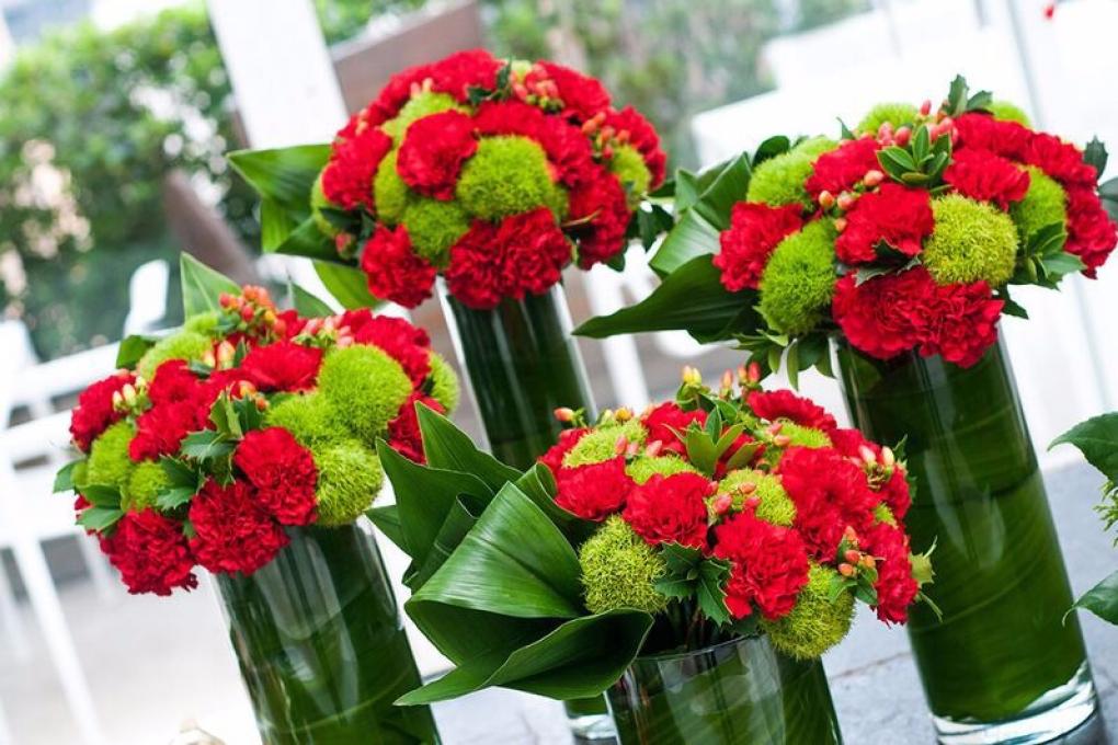 Flores com as cores do Natal